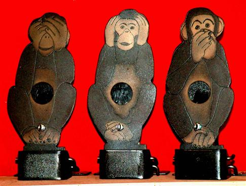 Wise Monkeys Field Targets.jpg